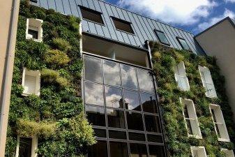 façade végétalisée logement neuf Fontainebleau