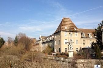 Immobilier neuf � Dijon: une cit� de la gastronomie pour c�l�brer ce tr�sor national