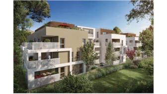 Pinel programme Montpellier L1 Montpellier