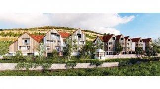 Eco habitat programme O'Coeur d'Obernai Obernai